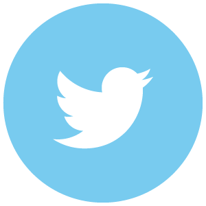 Twitter-300